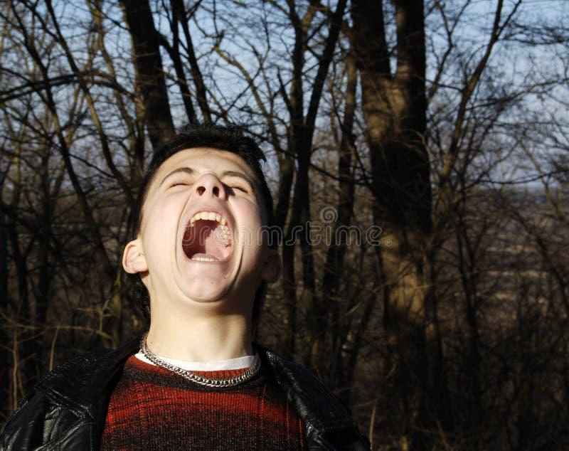 Le cri perçant photographie stock libre de droits
