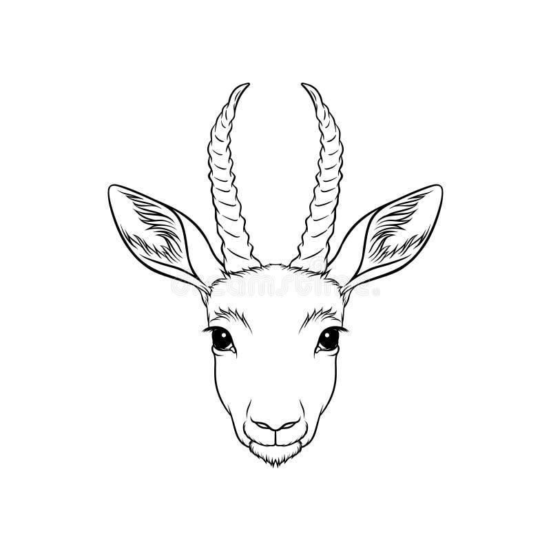 Le croquis des antilopes se dirigent, portrait de l'illustration tirée par la main noire et blanche animale de vecteur de forêt illustration stock