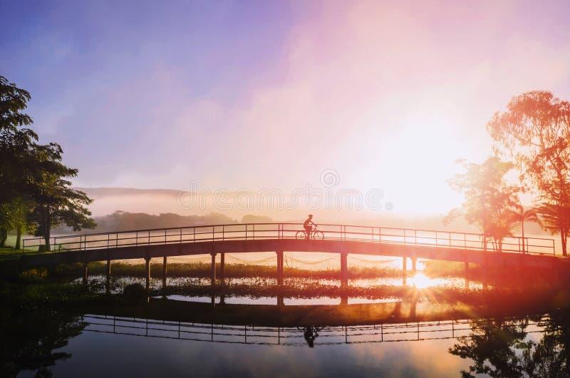 Le cycliste de silhouette vont le long du sport à l'arrière-plan de nature cycliste dans le lever de soleil images stock