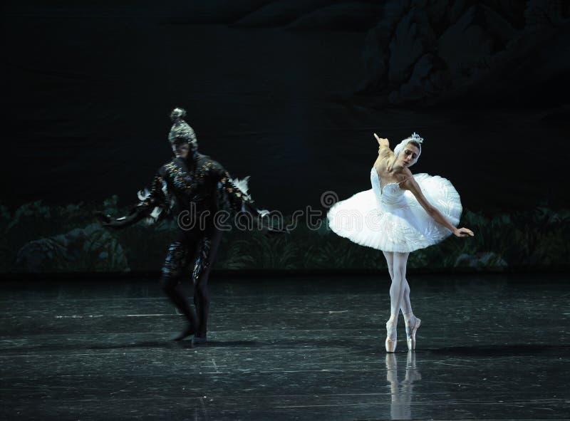 Le cygne blanc et le lac noir swan de cygne-ballet images stock
