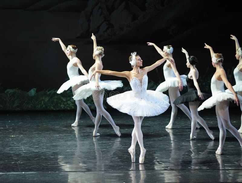 Le cygne réveille la dernière scène d'up-The du lac swan de Lac-ballet de cygne photos libres de droits