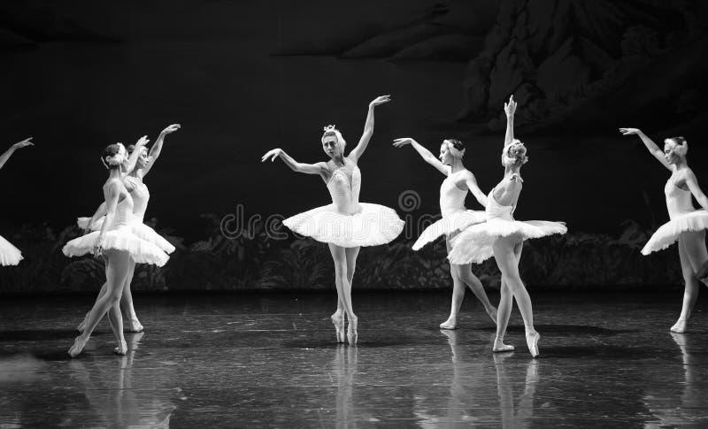 Le cygne réveille la dernière scène d'up-The du lac swan de Lac-ballet de cygne image stock