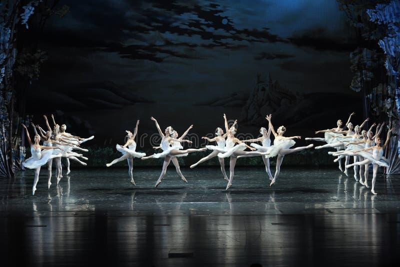 Le cygne vole au-dessus du lac swan de Lakeside-ballet de cygne de lac-Le images stock