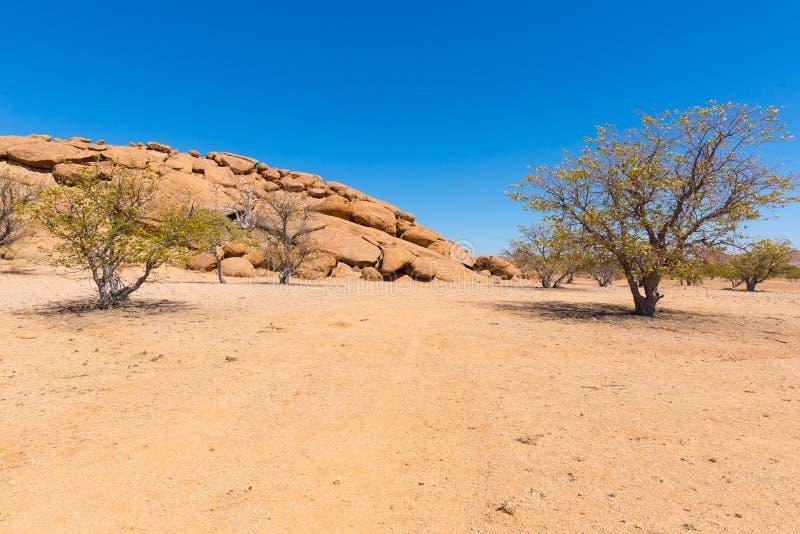 Le désert de Namib chez Twyfelfontein, dans la région majestueuse de Damaraland Brandberg, destination scénique de voyage en Nami image stock