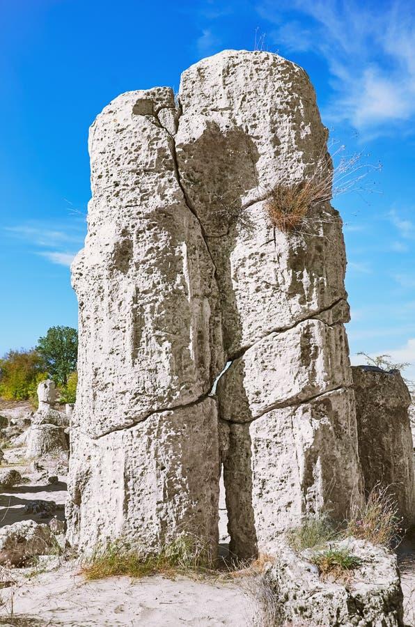 Le désert en pierre photos stock