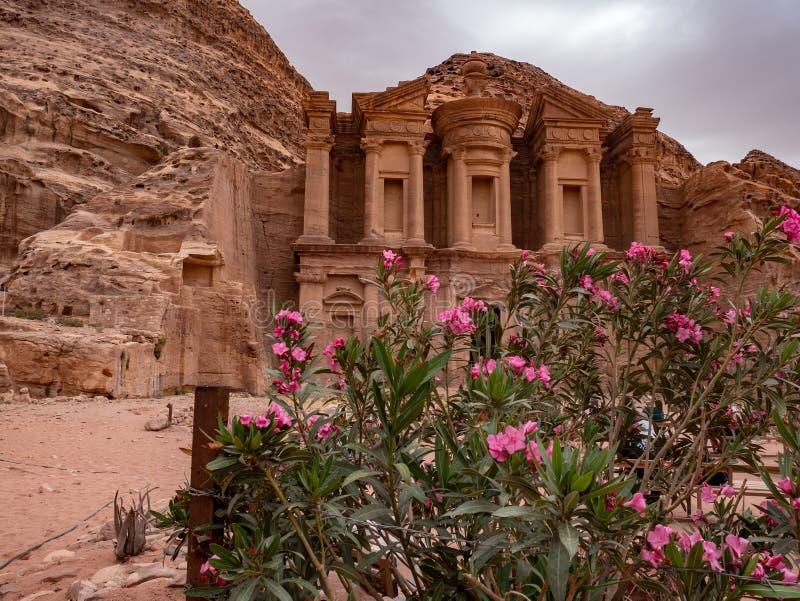 Le désert sauvage fleurit devant le monastère à PETRA, Jordanie photo stock