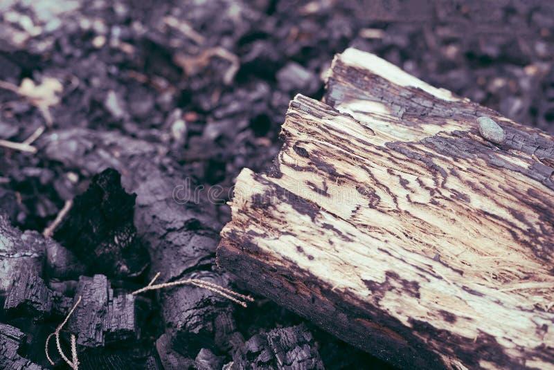 Le détail de plan rapproché du bois de chauffage de rondin d'arbre sur le charbon de bois chaud brûlé demeure d'un feu de camp de images stock