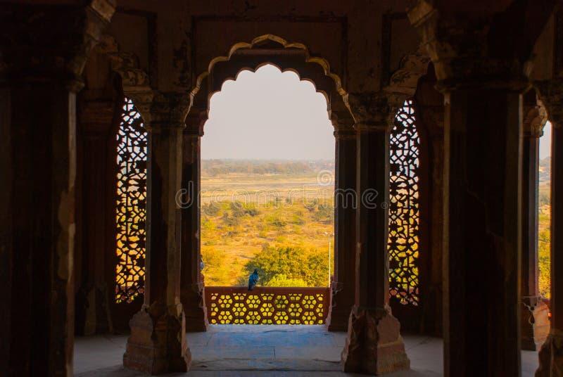 Le détail du mur Fort d'Âgrâ, Âgrâ, Inde photographie stock libre de droits