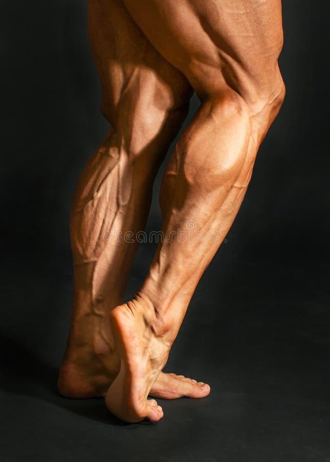 Le détail du veau masculin de jambe de dos de bodybuilder muscles sur le backgr noir photos stock