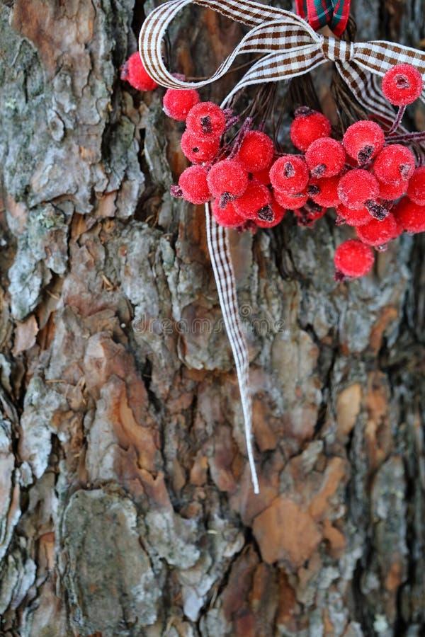Le decorazioni di Natale su un fondo del pino scortecciano immagine stock