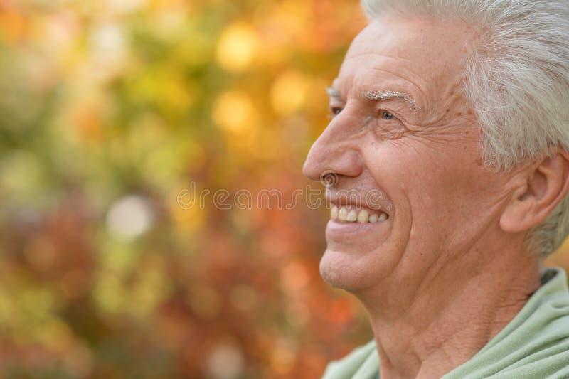 Le den äldre mannen i höst parkera royaltyfri foto