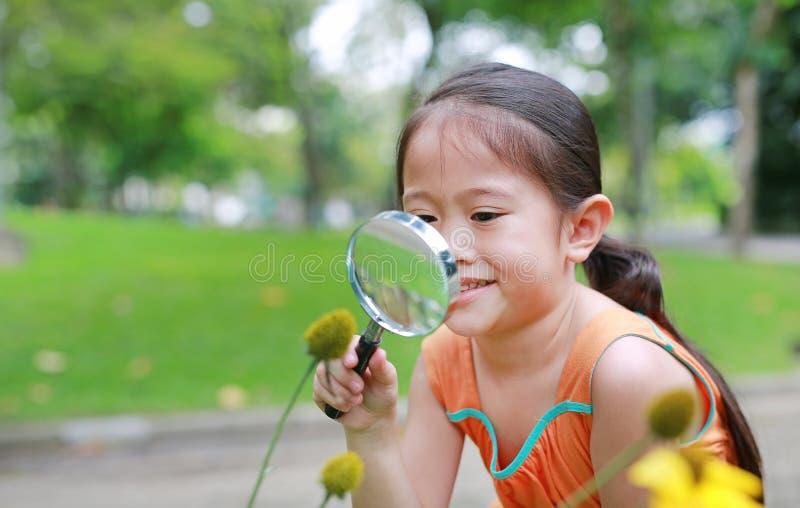 Le den nätta lilla asiatiska barnflickan med förstoringsglasblickar på blomman i sommar parkera royaltyfria bilder