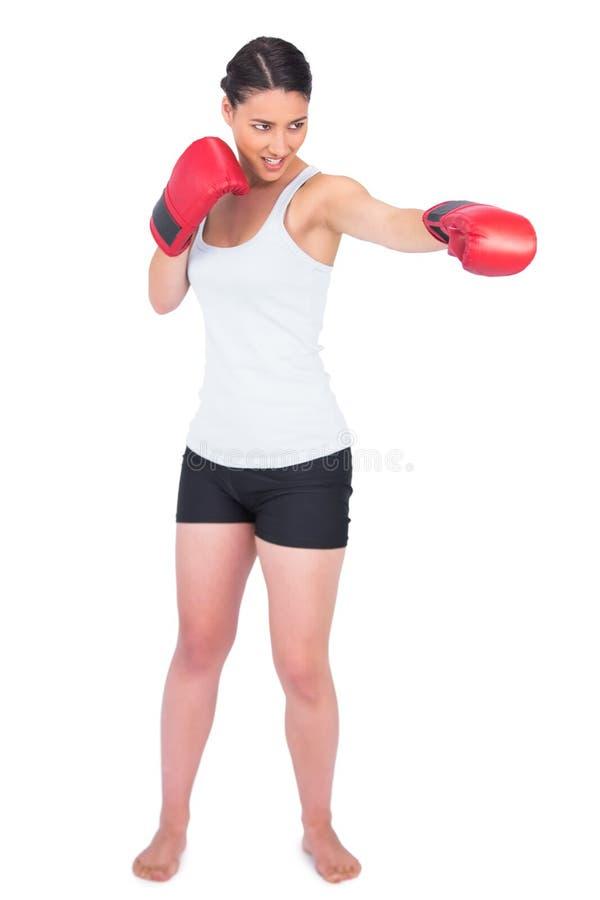 Le den spensliga modellen med att stansa för boxninghandskar royaltyfria bilder