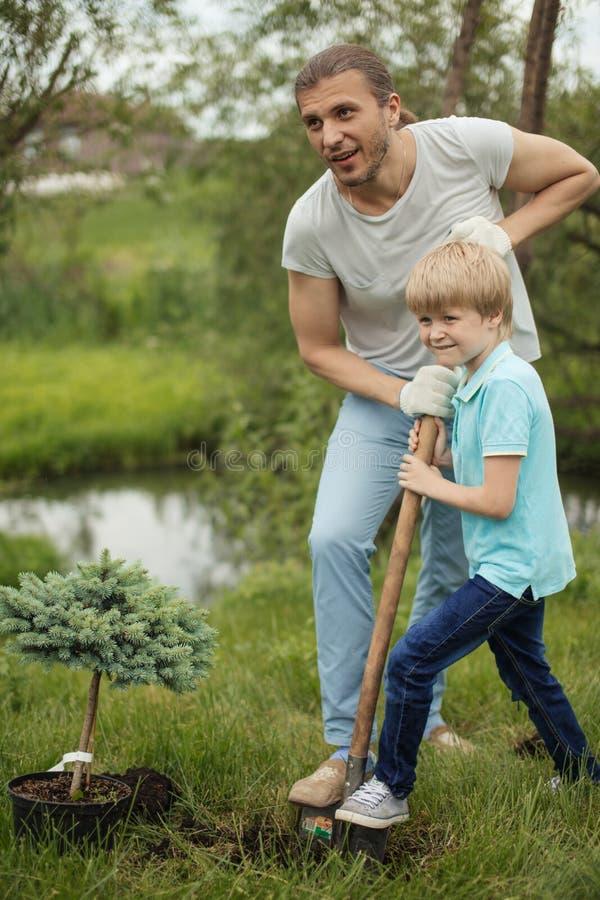 Le den vuxna fadern och hans sonen som planterar ett träd i, parkera utomhus royaltyfria foton
