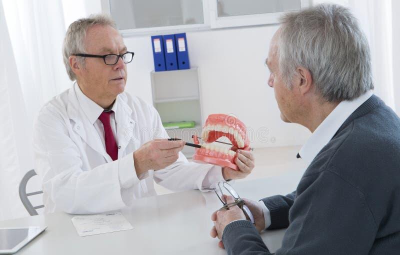 Le dentiste expliquant le travail à l'homme supérieur sur des dents modèlent image stock