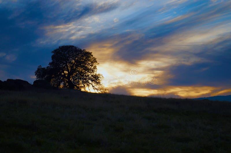 Le dernier coucher du soleil image stock