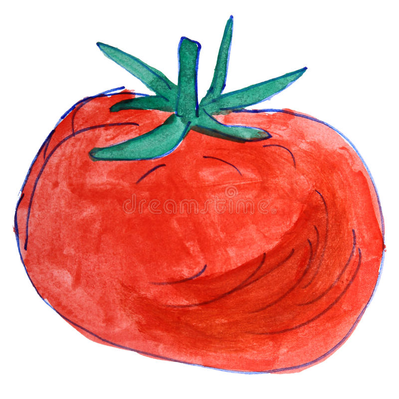 Le dessin d'aquarelle badine la tomate de bande dessinée sur le blanc illustration stock