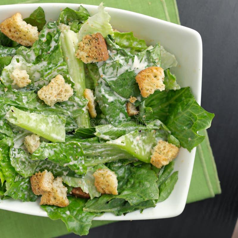 Le dessus de salade de César visualisent vers le bas image libre de droits
