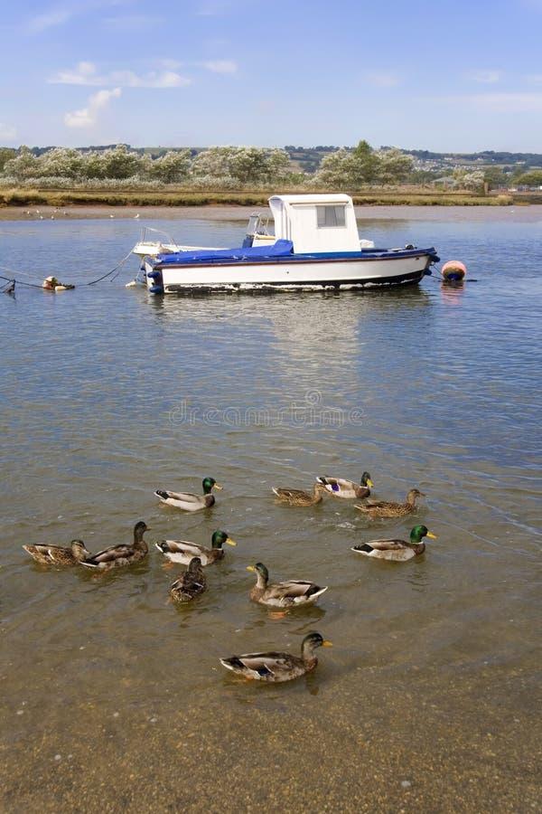 Le Devon photographie stock libre de droits