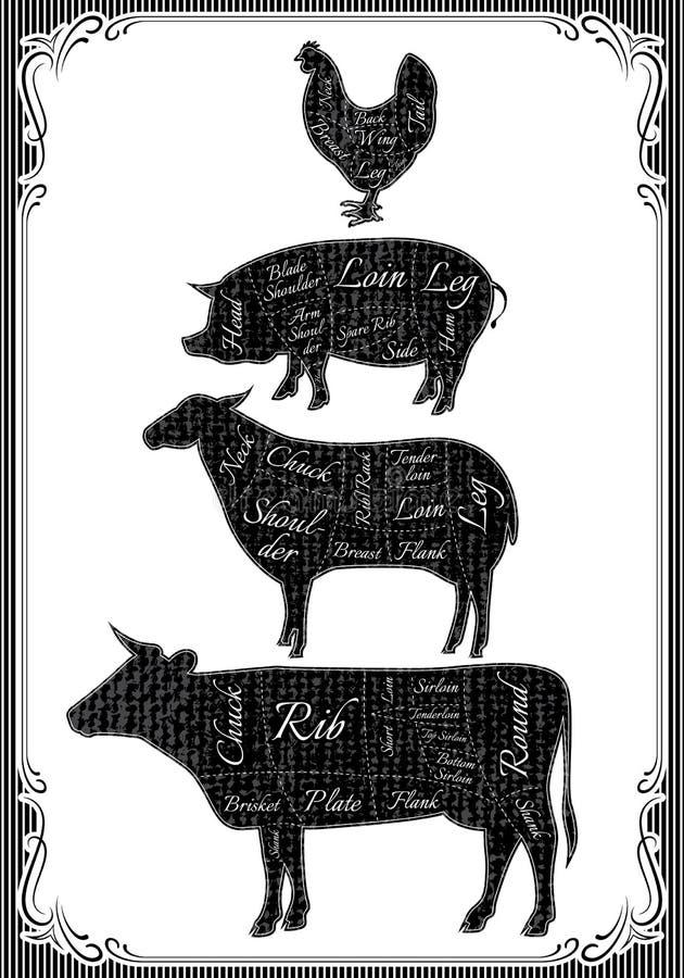 Le diagramme a coupé des carcasses de poulet, porc, vache, agneau illustration de vecteur