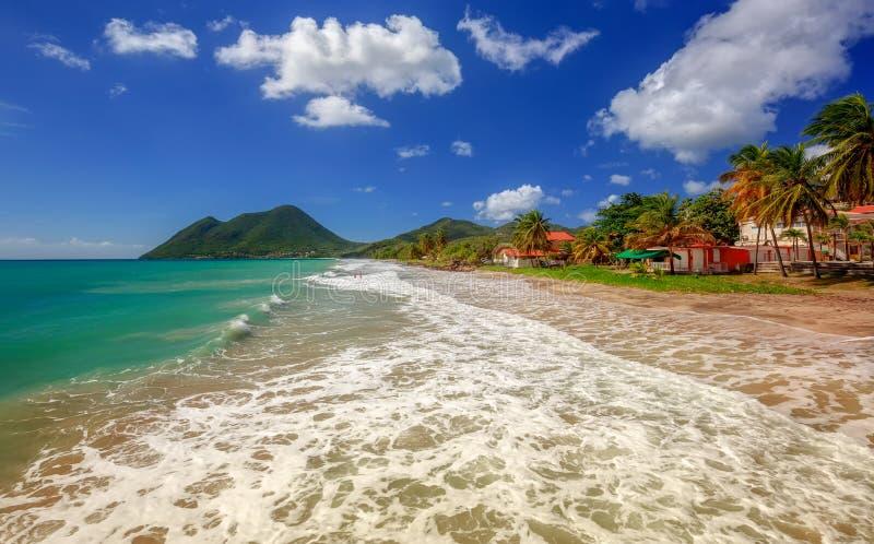 Le Diamant Praia com palmeira do coco e o céu azul, Martinica, as Caraíbas imagem de stock