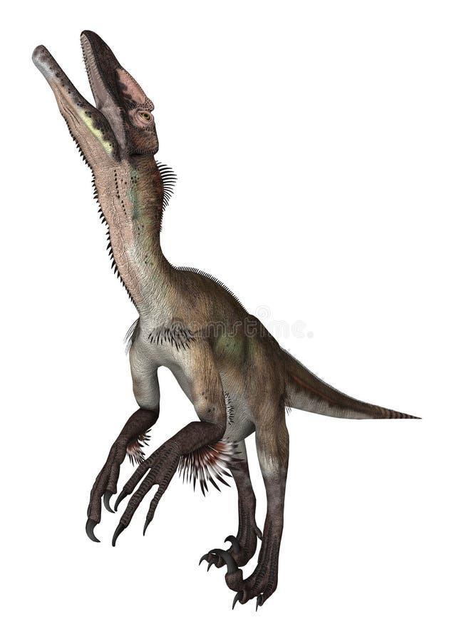 le dinosaur du découpage 3d au-dessus du chemin rendent l'utahraptor d'ombre blanc illustration libre de droits