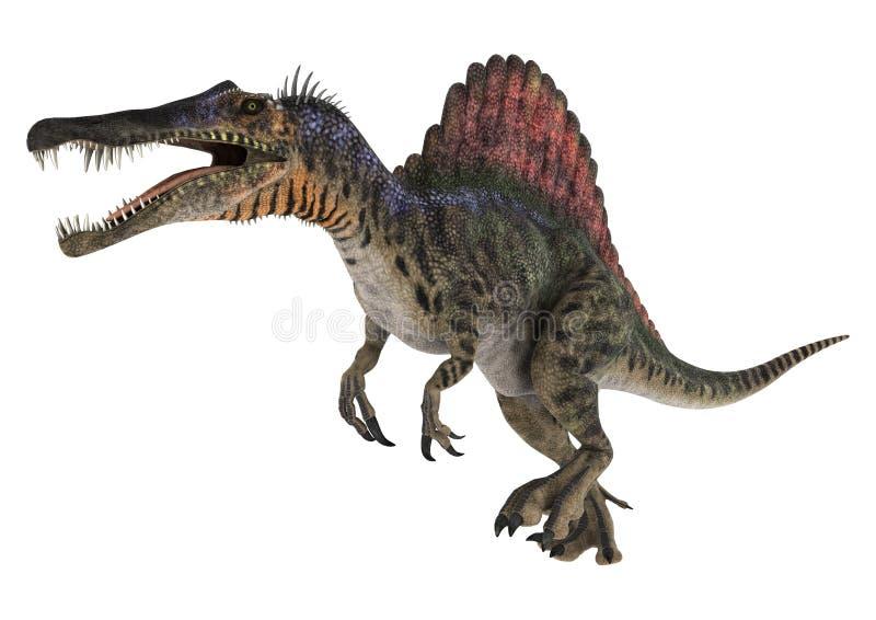 le dinosaur du découpage 3d au-dessus du chemin rendent le spinosaurus d'ombre blanc illustration stock