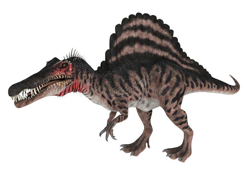 le dinosaur du découpage 3d au-dessus du chemin rendent le spinosaurus d'ombre blanc illustration de vecteur