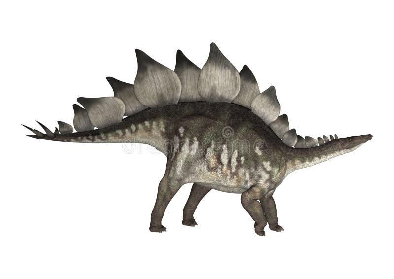 le dinosaur du découpage 3d au-dessus du chemin rendent le stegosaurus d'ombre blanc illustration de vecteur