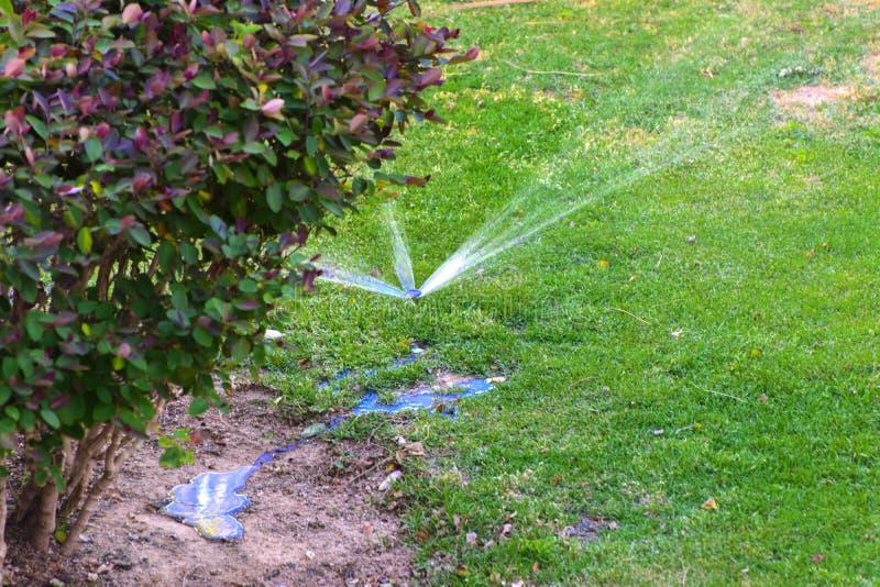 Le dispositif moderne du jardin d'irrigation Système d'arrosage automatique de pelouse arrosant sur un fond d'herbe verte, plan r images libres de droits