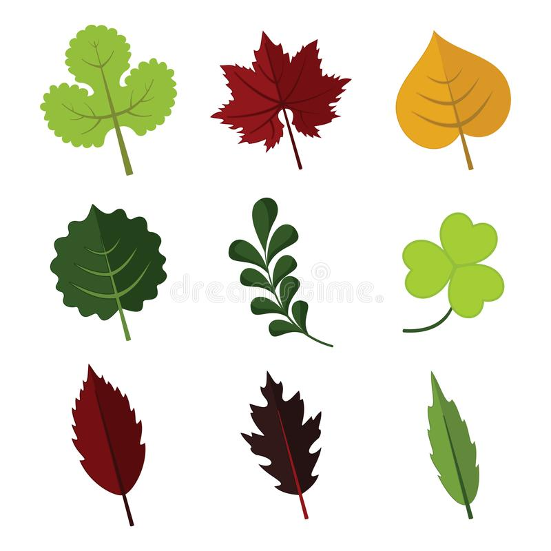Le divers élément floral part de l'ensemble de graphique d'illustration de vecteur illustration stock