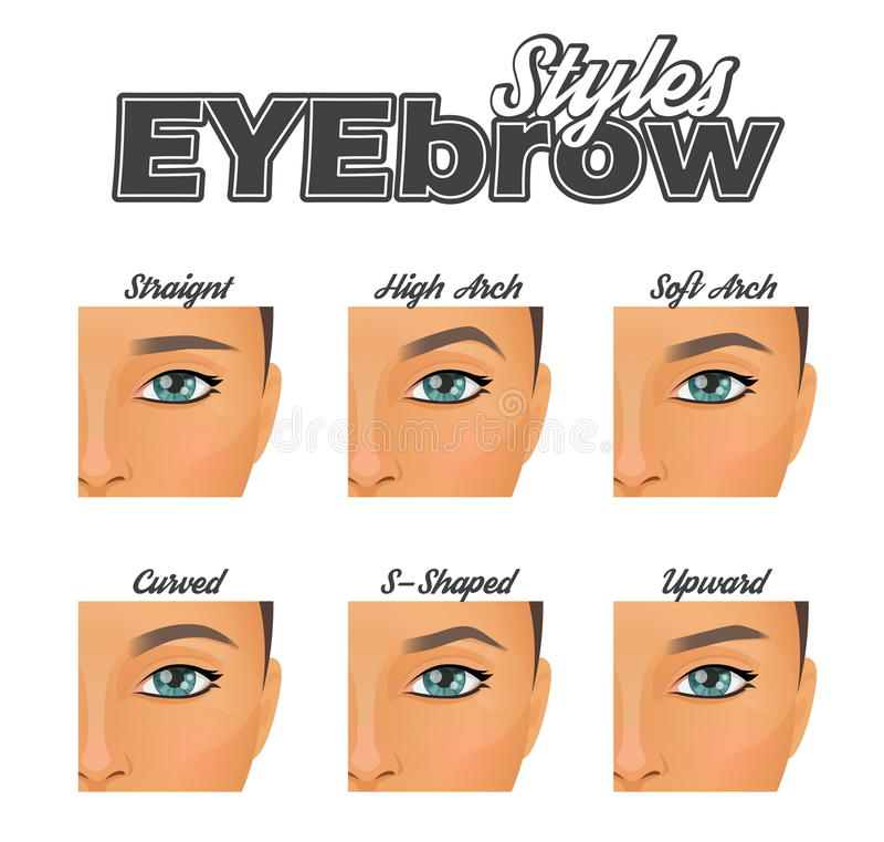 Le divers sourcil forme le diagramme de maquillage illustration de vecteur