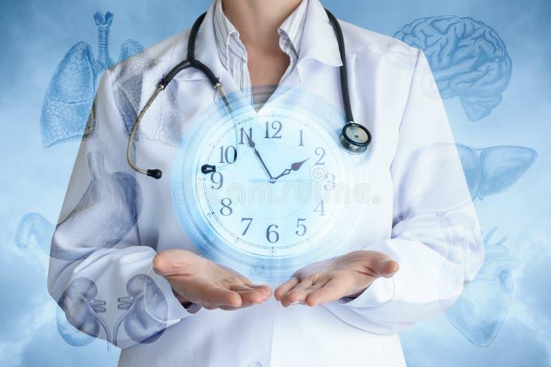 Le docteur montre l'horloge sur le fond des organes internes photographie stock libre de droits