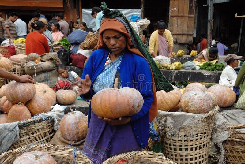 Le donne introducono in India immagine stock