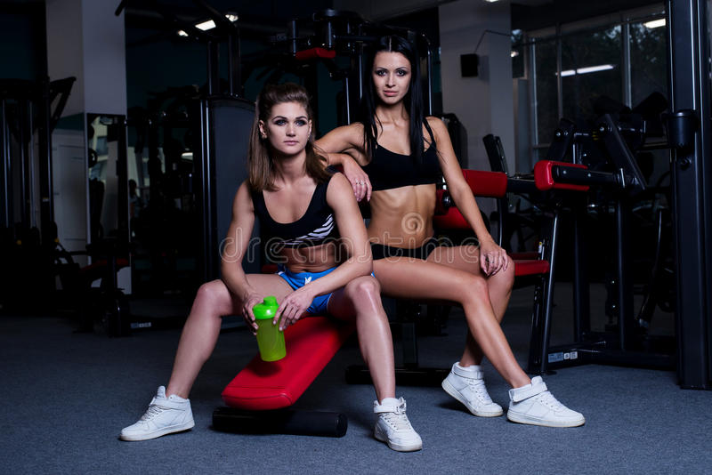 Le donne sexy di forma fisica in abiti sportivi che riposano dopo le teste di legno si esercita in palestra Belle ragazze con l'e immagini stock libere da diritti