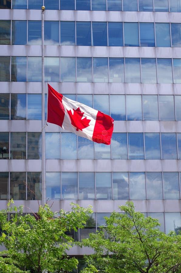 Le drapeau canadien vole au demi mât photos stock