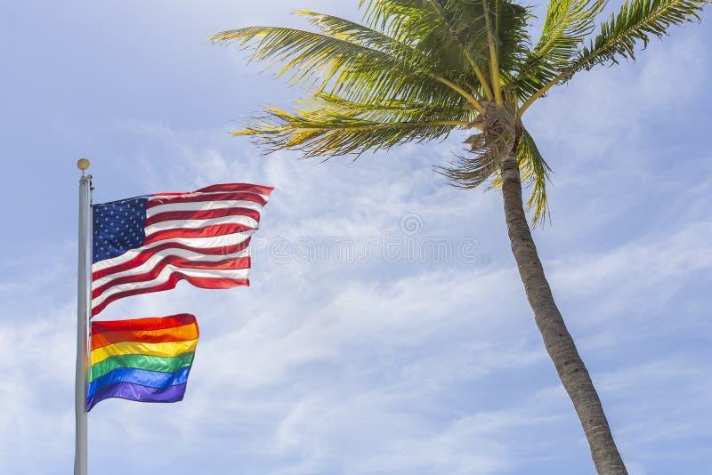 Le drapeau d'Américain et de Gay Pride vole haut à côté d'un palmier de noix de coco image libre de droits