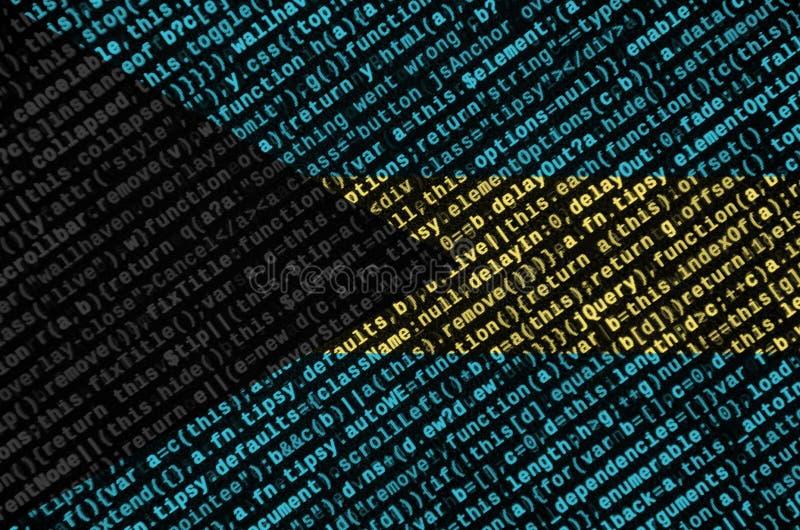 Le drapeau des Bahamas est dépeint sur l'écran avec le code de programme Le concept de la technologie et du développement de site illustration de vecteur