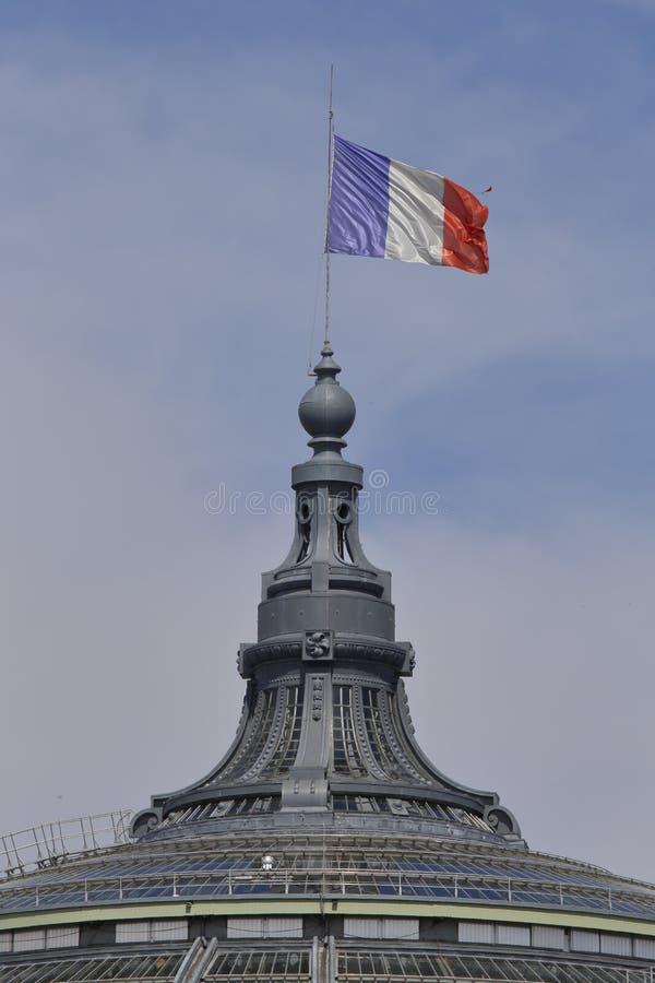 Le drapeau français vole au-dessus du toit en verre du Palais grand, Paris Frances - août 2015 photos stock