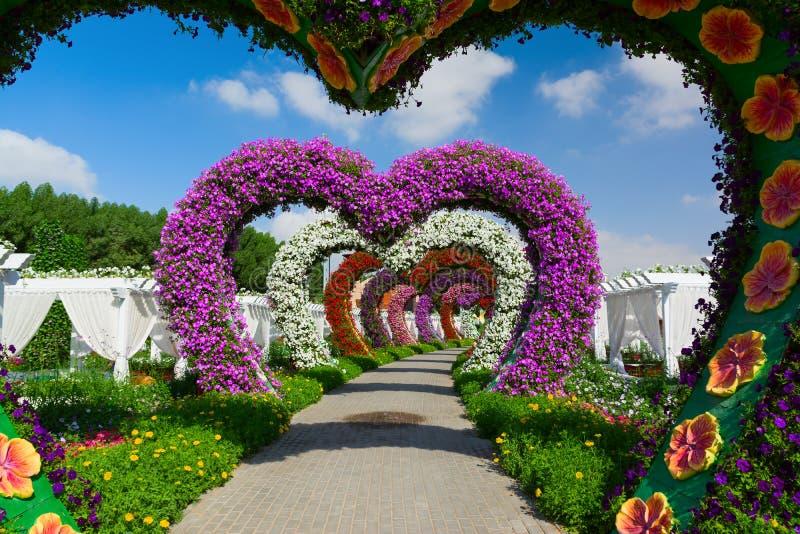LE DUBAÏ, EMIRATS ARABES UNIS - 8 DÉCEMBRE 2016 : Le jardin de miracle de Dubaï est plus grand jardin d'agrément naturel dans le  photo stock