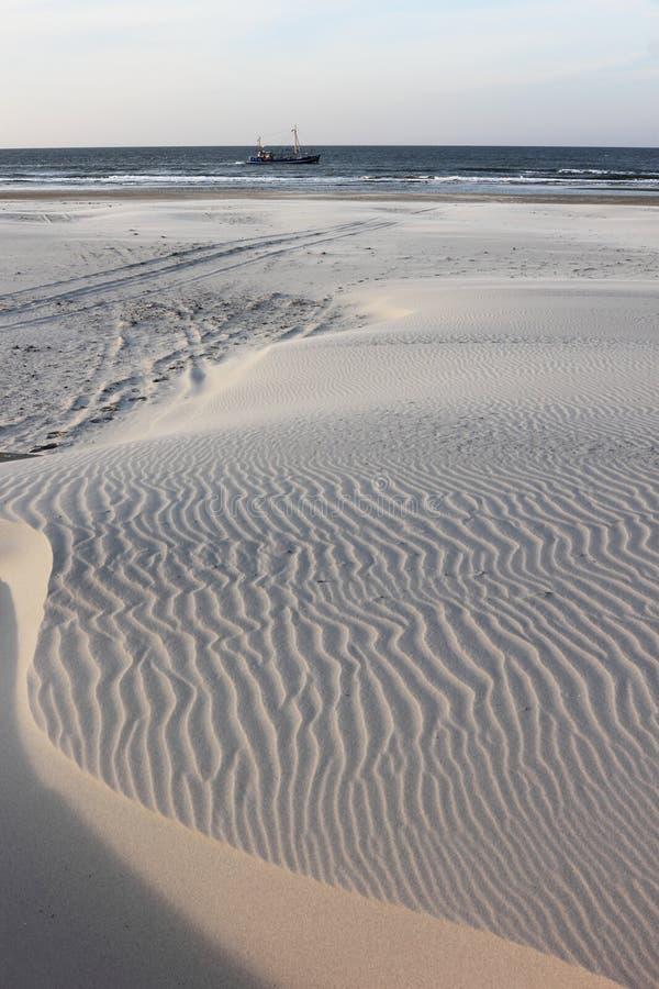 Le dune di sabbia d'ondeggiamento a Ameland tirano, l'Olanda fotografie stock libere da diritti