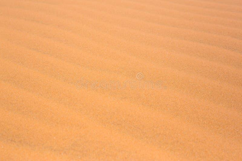 le dune di sabbia rosse del deserto strutturano il modello rosso di struttura delle dune di sabbia del deserto del modello di est immagini stock libere da diritti