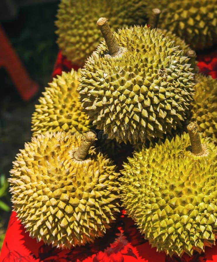 Le durian est un fruit asiatique doux et savoureux célèbre typique de Singapour Malaisie et l'Indonésie avec les transitoires ou  image libre de droits