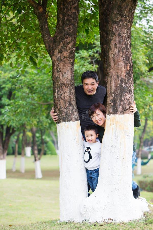 Le famiglie guardano fuori stranamente fra gli alberi con il fronte felice immagini stock libere da diritti