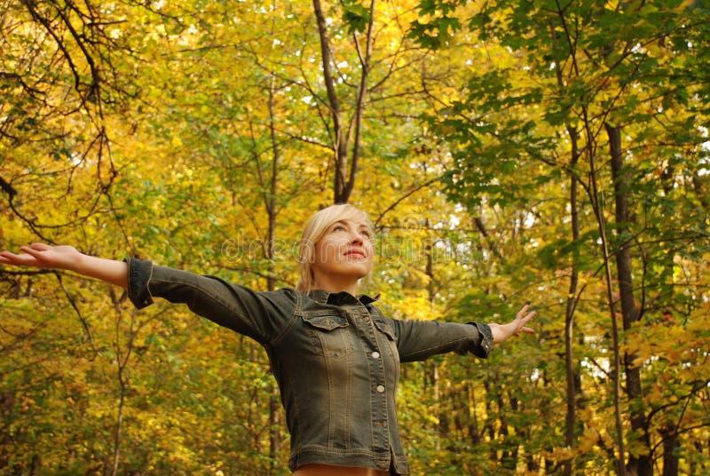 Le femme est dans la forêt d'automne de forêt image libre de droits