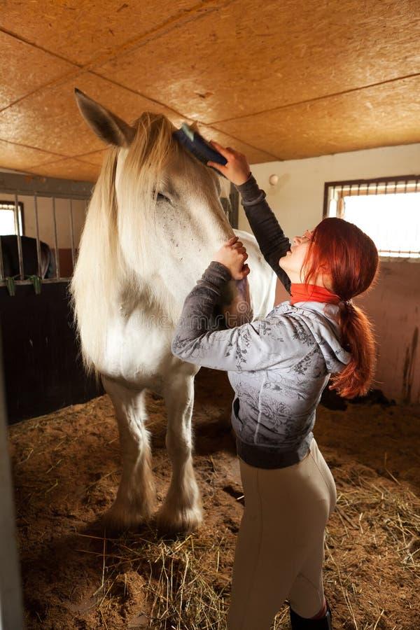 Le femme préparent le cheval pour l'équitation image libre de droits