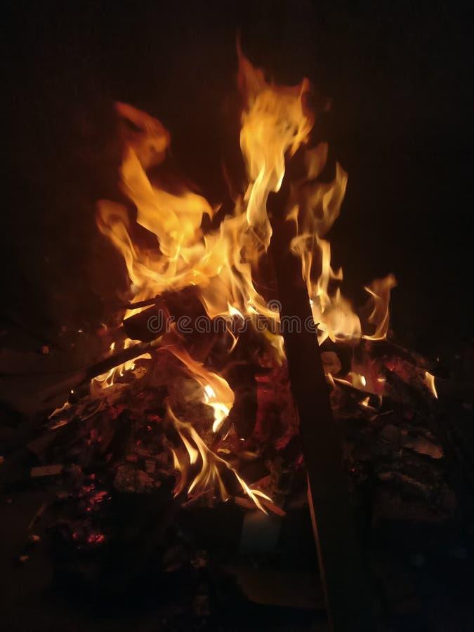 Le festival indien Lohri a célébré par le feu en bois de foudre images stock