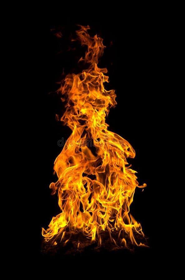 Le feu photo stock