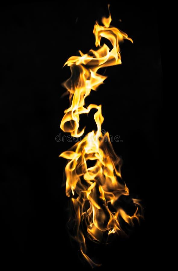 Le feu abstrait de flamme sur le fond noir photo libre de droits