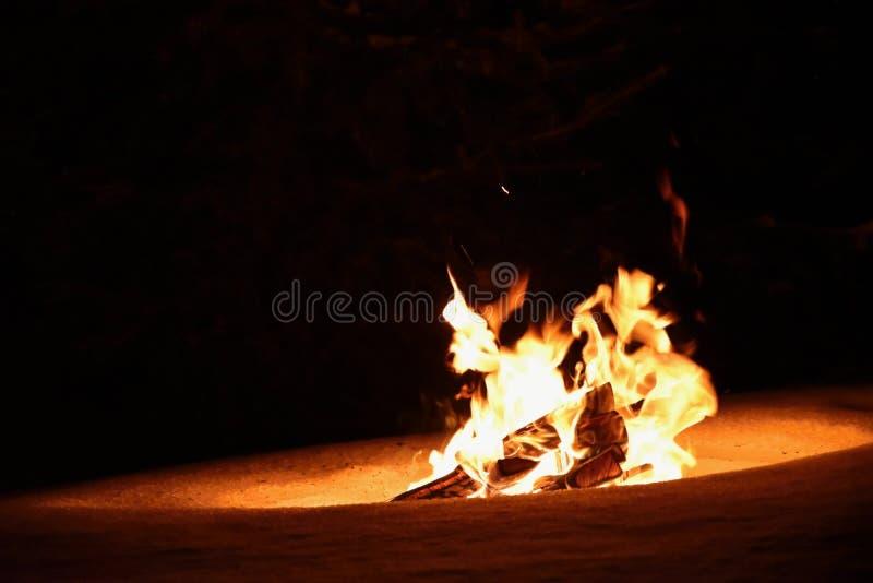 Le feu brûlant en hiver sur la neige et la nuit feu photographie stock
